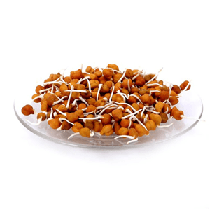 chana sprouts nutrition